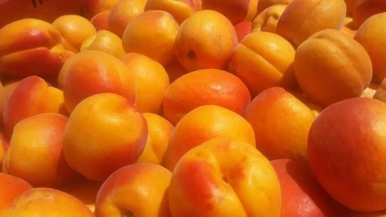 Les ventes directes d'abricots se poursuivent